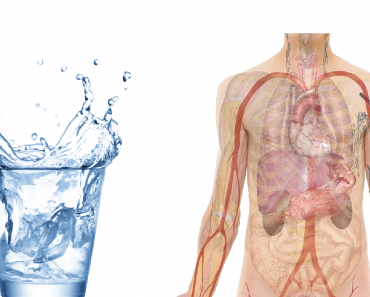 What Would Happen If You Replace All Drinks with Water