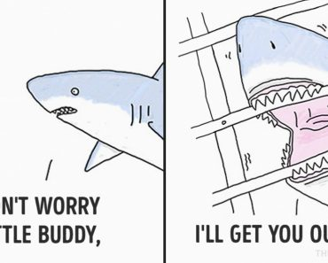 15 Comic Strips That Give Different Perspective About What Animals Think