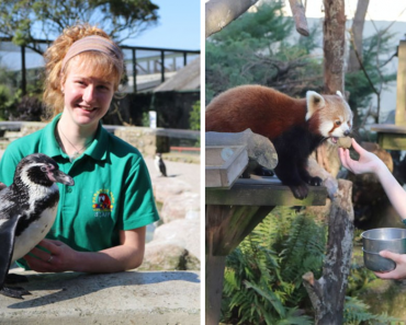 Zookeepers Self-Isolate For 3 Months In A UK Wildlife Park To Take Care Of Animals