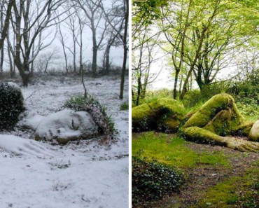 """Incredible Sculpture In """"The Lost Gardens Of Heligan"""" Changes Its Appearance With The Seasons"""
